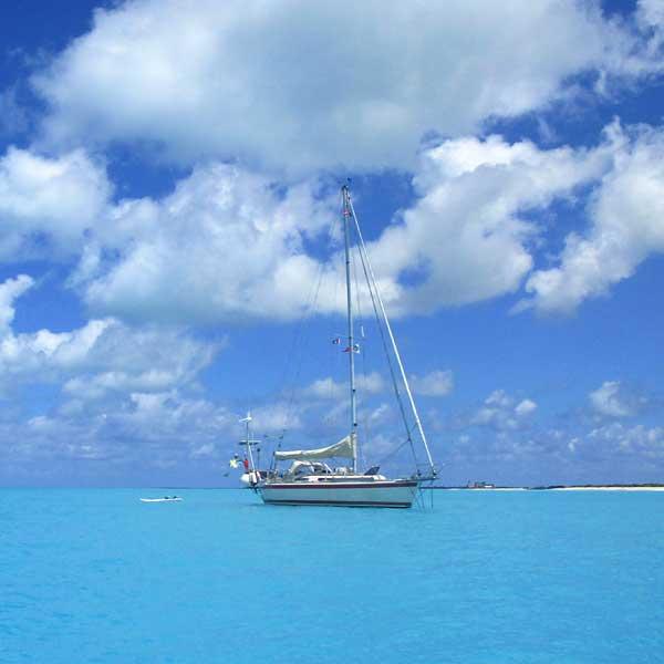 Ankerliv-Barbuda